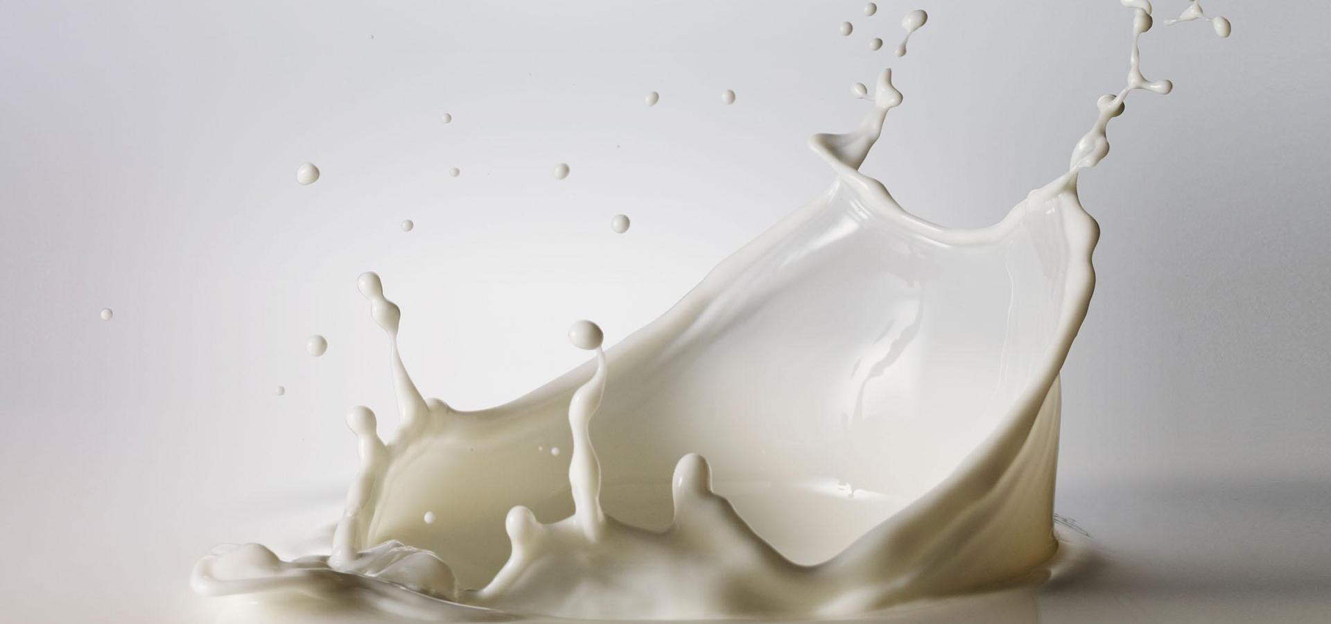 transporte a granel de leche - travesa.es